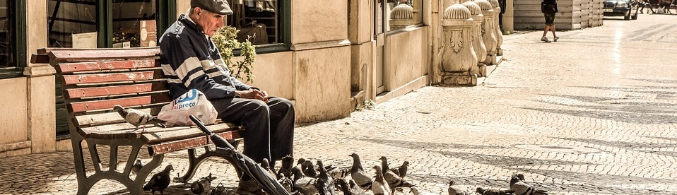 older_man_feeding_birds-pixabay-banner